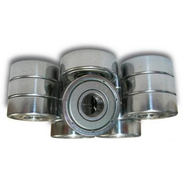 SKF Ball Bearing 6307 6308 6309 6310 Zz 2RS Open